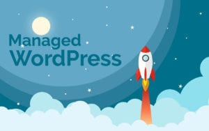 Managed WordPress Serv